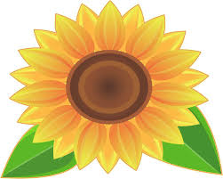 Stickertalk Sunflower Vinyl Sticker 5 Inches X 4 Inches Stickertalk