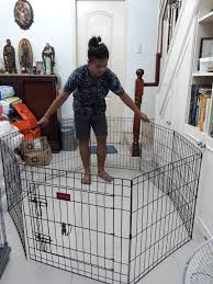 8 Panels Dog Cage Dog Fence Collapsible Pets Supplies Pet Accessories On Carousell