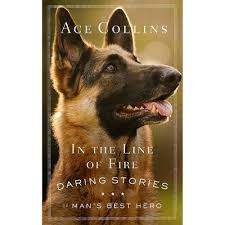 In The Line Of Fire - By Ace Collins (Paperback) : Target