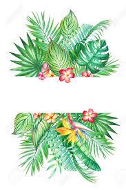 Marco De Acuarela Con Hojas Tropicales Y Flores Aisladas Sobre