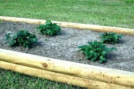 diy garden edging ideas link edge