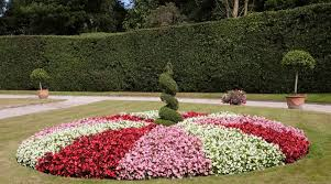 37 Best Flower Hedge Ideas 23 Is So Easy