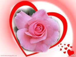 وردة رومانسية جدا