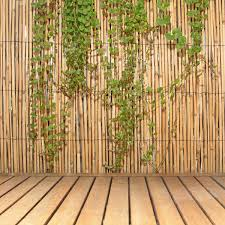 Bamboo Fencing Reed For Sale Only 4 Left At 75