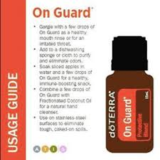 15 uses for onguard recipeore