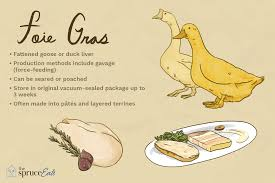 what is foie gras and how is it used