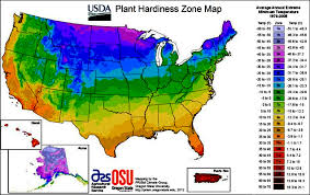 hardiness zones and global warming