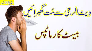allergy ke karan in hindi and urdu