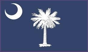 5in X 3in South Carolina State Flag Bumper Sticker Decal Window Stickers Car Decals Stickertalk