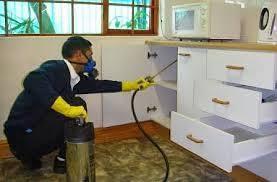 شركة رش مبيدات بالرياض 0552121431 مع أفضل شركة مكافحة الحشرات