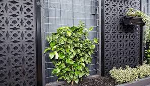 Image Result For Bunnings Wire Trellis Front Yard Landscaping Simple Yard Landscaping Simple Modern Landscaping