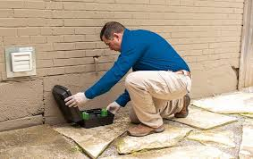 Home Pest Control | Pest Management For Central Maryland Homeowners