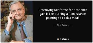 top rainforest quotes of a z quotes