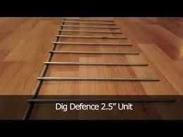 Lowes Pet Supplies Dig Defence Stop Dogs From Digging Under The Fence