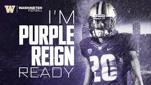 washington huskies 1080p 2k 4k 5k hd