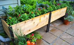 container gardens or elevated garden beds