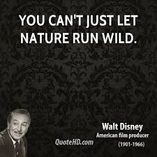 quotes about running wild quotes
