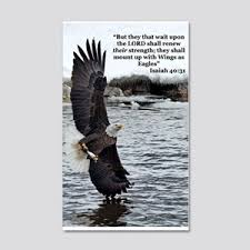 Bald Eagle Wall Decals Cafepress