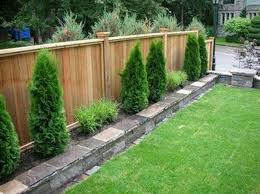 privacy fence line landscaping ideas