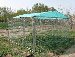 Best Dog Kennel Pen Run Outdoor Exercise Cage For Sale Inthemarket
