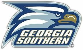 Magnetic Decal For Car Georgia Southern Eagles College Ncaa Magnet 3 5 Ebay