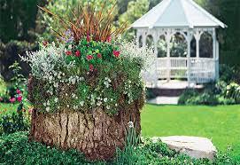 tree stump to planter conversions
