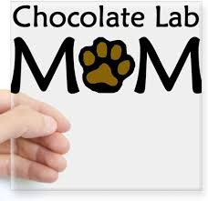 Amazon Com Cafepress Chocolate Lab Mom Sticker Square Bumper Sticker Car Decal 3 X3 Small Or 5 X5 Large Home Kitchen