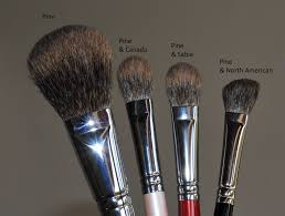 squirrel makeup brushes review