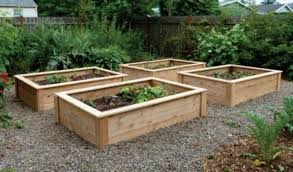 raised beds diy inspirational cedar