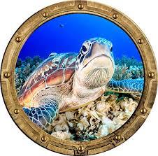 Amazon Com 24 Port Scape Grumpy Sea Turtle Rustic Porthole 3d Window Wall Decal Removable Wall Sticker Under The Sea Animal Ocean Portal Childrens Room Decor Home Kitchen