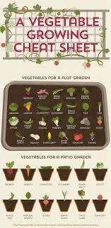 vegtrug limited on twitter preparing