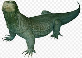 komodo dragon lizard desktop wallpaper