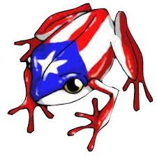 Puerto Rico Stickers Puerto Rico Flag Boricua Car Decal Etsy