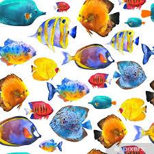 tropical fish watercolor ilration