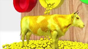 Con Bò Sữa-Dậy Màu Sắc Cho Bé Cùng Bò Sữa LK Nhạc Thiếu Nhi Sôi ...