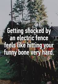 Getting Shocked By An Electric Fence Feels Like Hitting Your Funny Bone Very Hard