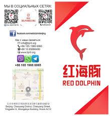 Red Dolphin Consulting - 咨询机构 - 北京市 - 901 张照片