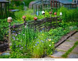 Beautiful Decorative Fence Hanging Pots Stock Photo Edit Now 1442275241