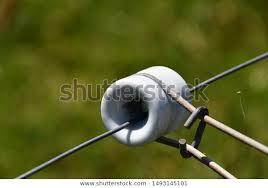 Porcelain Reel Electric Fence Insulator On Animals Wildlife Stock Image 1493145101