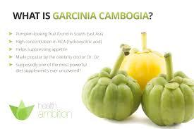 garcinia cambogia a miracle weight