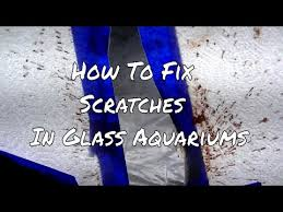 remove scratches from glass aquariums