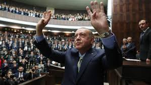 Erdogan Rising: The Battle for the Soul of Turkey, by Hannah ...