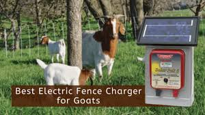 Best Electric Fence Charger For Goats Solar Chargers Reviews
