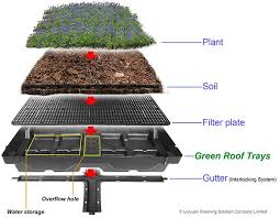 green roofs what is the working