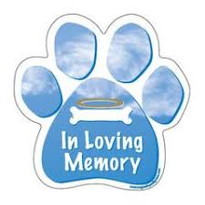 In Loving Memory Dog Paw Magnet Doggy Style Gifts