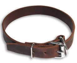 heavy duty leather dog collar custom