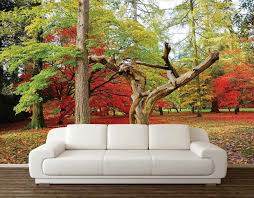 Wall Decal Nature Sticker Hd Wallpapers Art Tv For Nursery Picture Decoration Vamosrayos