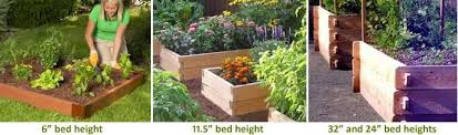 raised beds soil depth requirements