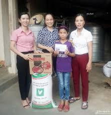 Cô bé mồ côi ở Nghệ An cần giúp đỡ để tiếp tục con đường học tập ...