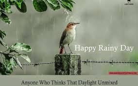 happy rainy day poetry